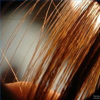 capelli grassi e oleosi