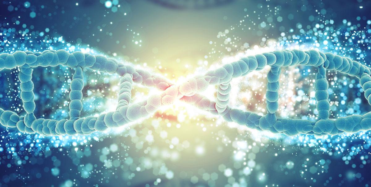 Caduta dei capelli: una ricerca svela quali sono i 287 geni coinvolti